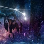 Step into action with the new moon